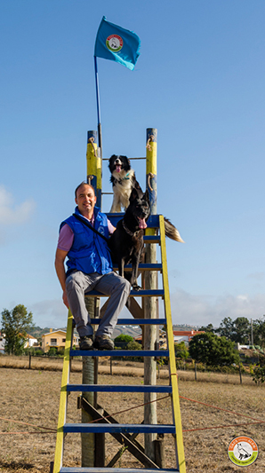 Centro de Treino Canino | Cães mais Além